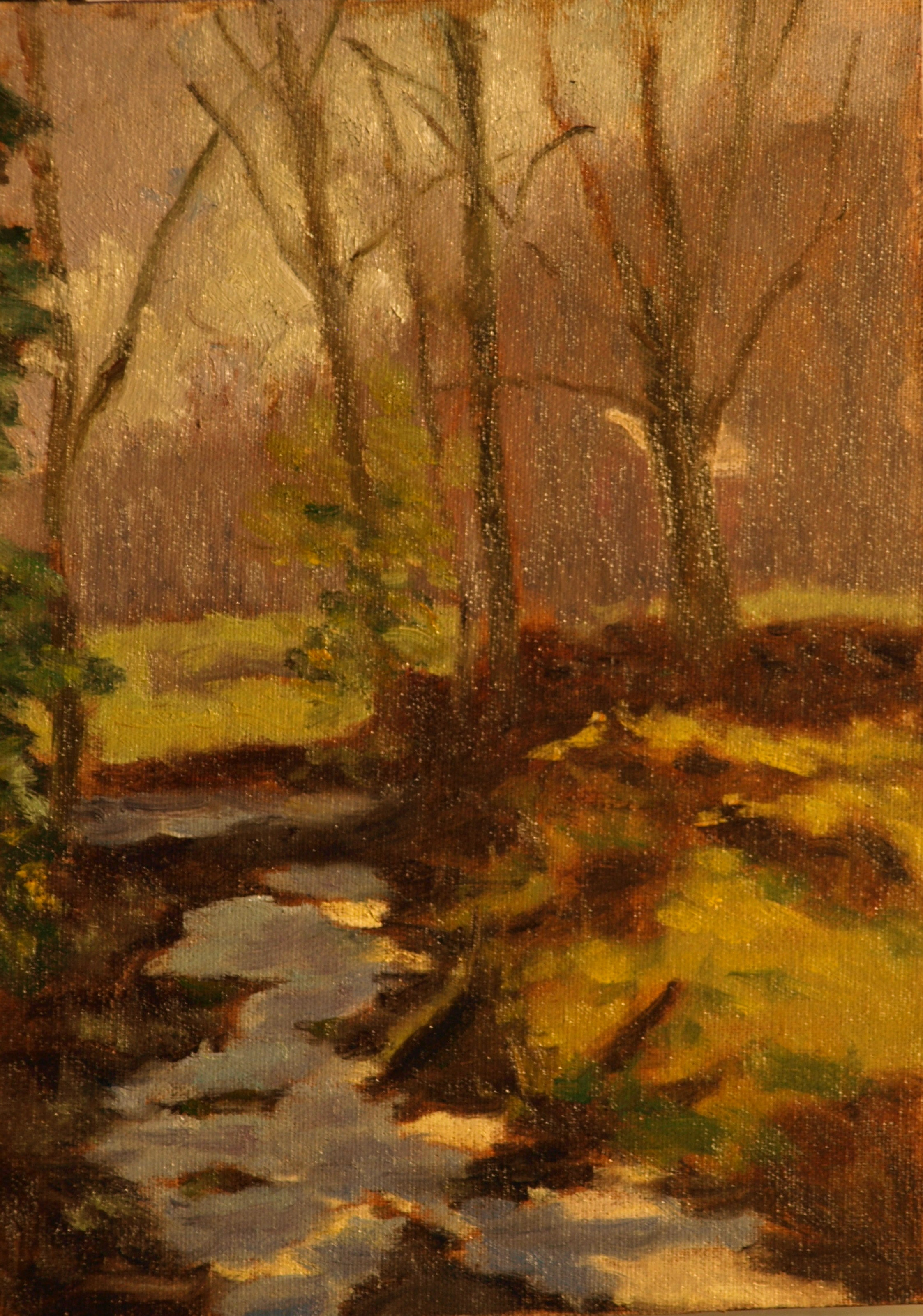 Brook in Hazy Sunlight, Oil on Canvas on Panel, 9 x 12 Inches, by Richard Stalter, $225
