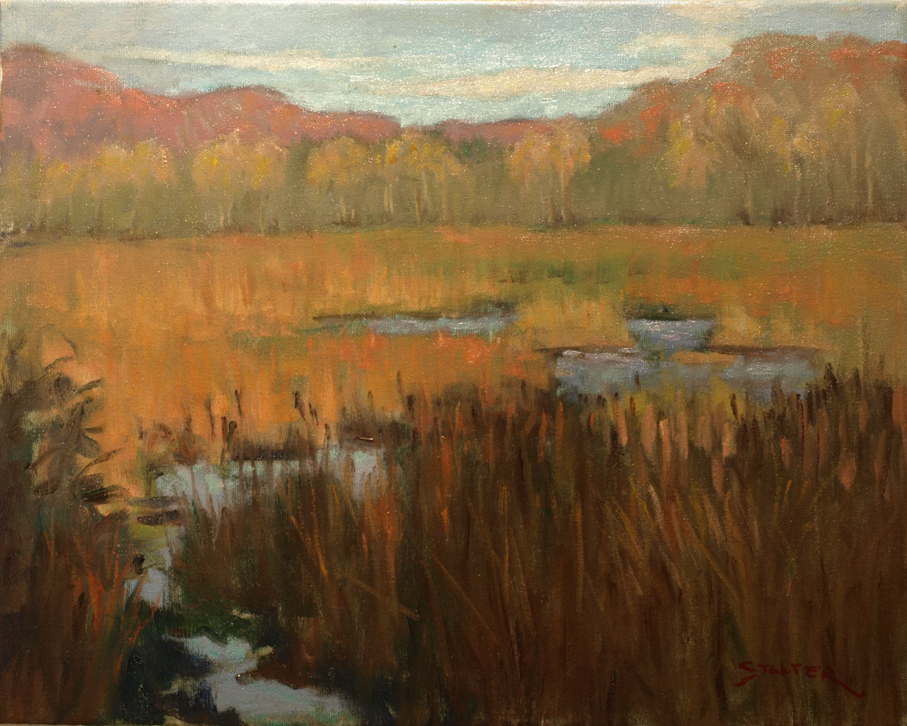 Marsh in Full Autumn, Oil on Canvas, 16 x 20 Inches, by Richard Stalter, $450
