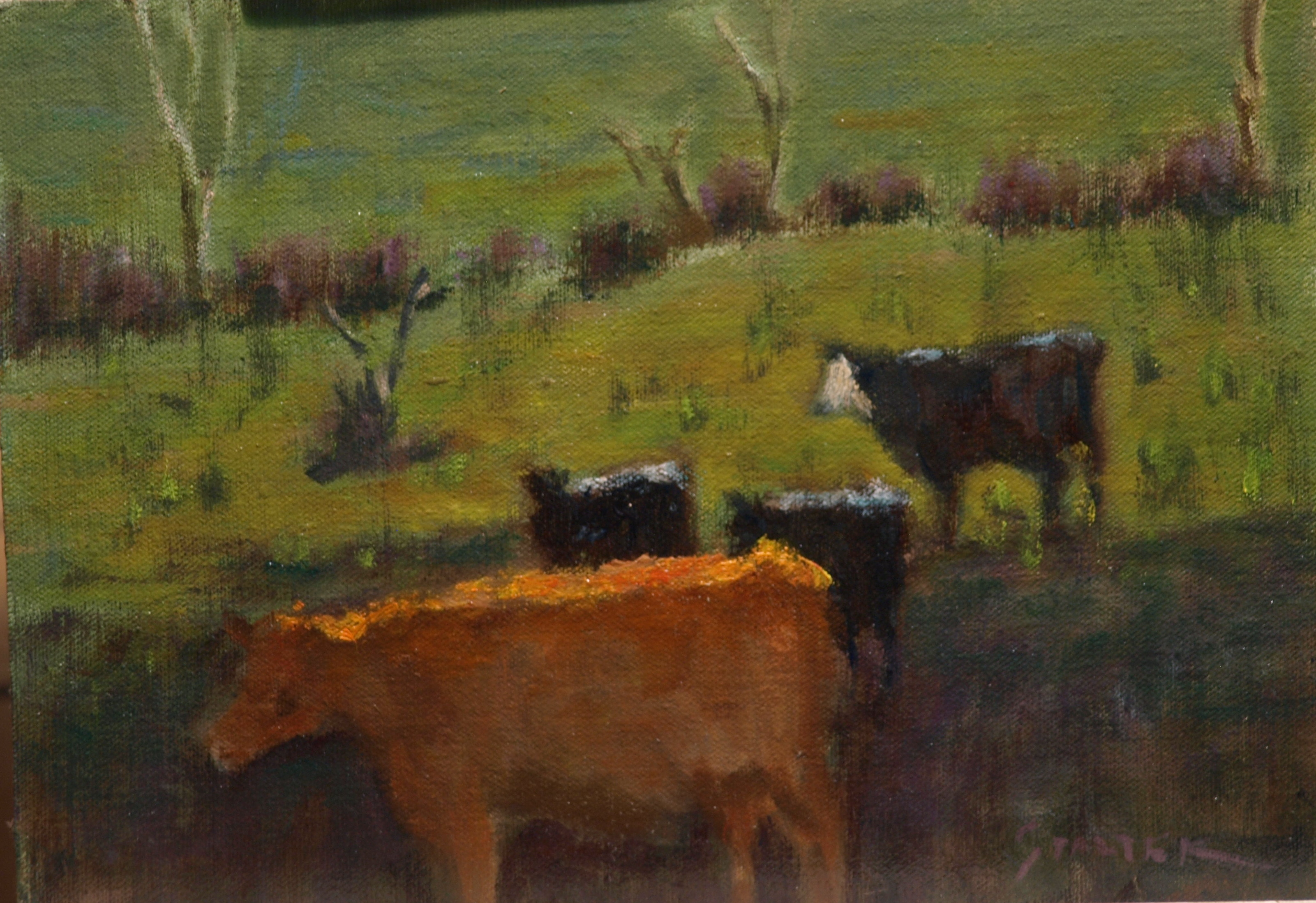 Local Cows, Oil on Canvas on Panel, 9 x 12 Inches, by Richard Stalter, $225