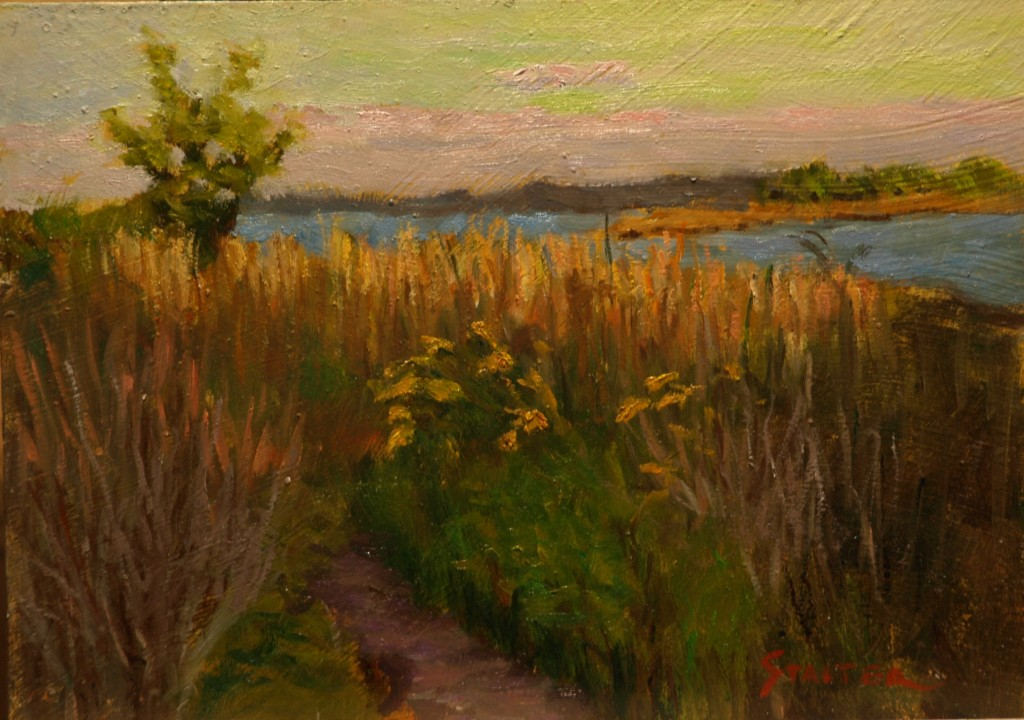 Marsh Pathway, Oil on Canvas on Panel, 8 x 14 Inches, by Richard Stalter, $225