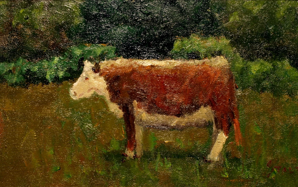 White Faced Cow, Oil on Canvas on Panel, 8 x 14 Inches, by Richard Stalter, $225