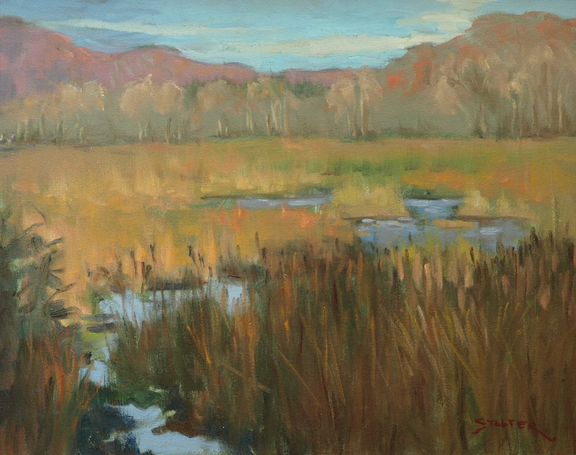 Austin's Marsh - Autumn, Oil on Canvas, 16 x 20 Inches, by Richard Stalter, $400