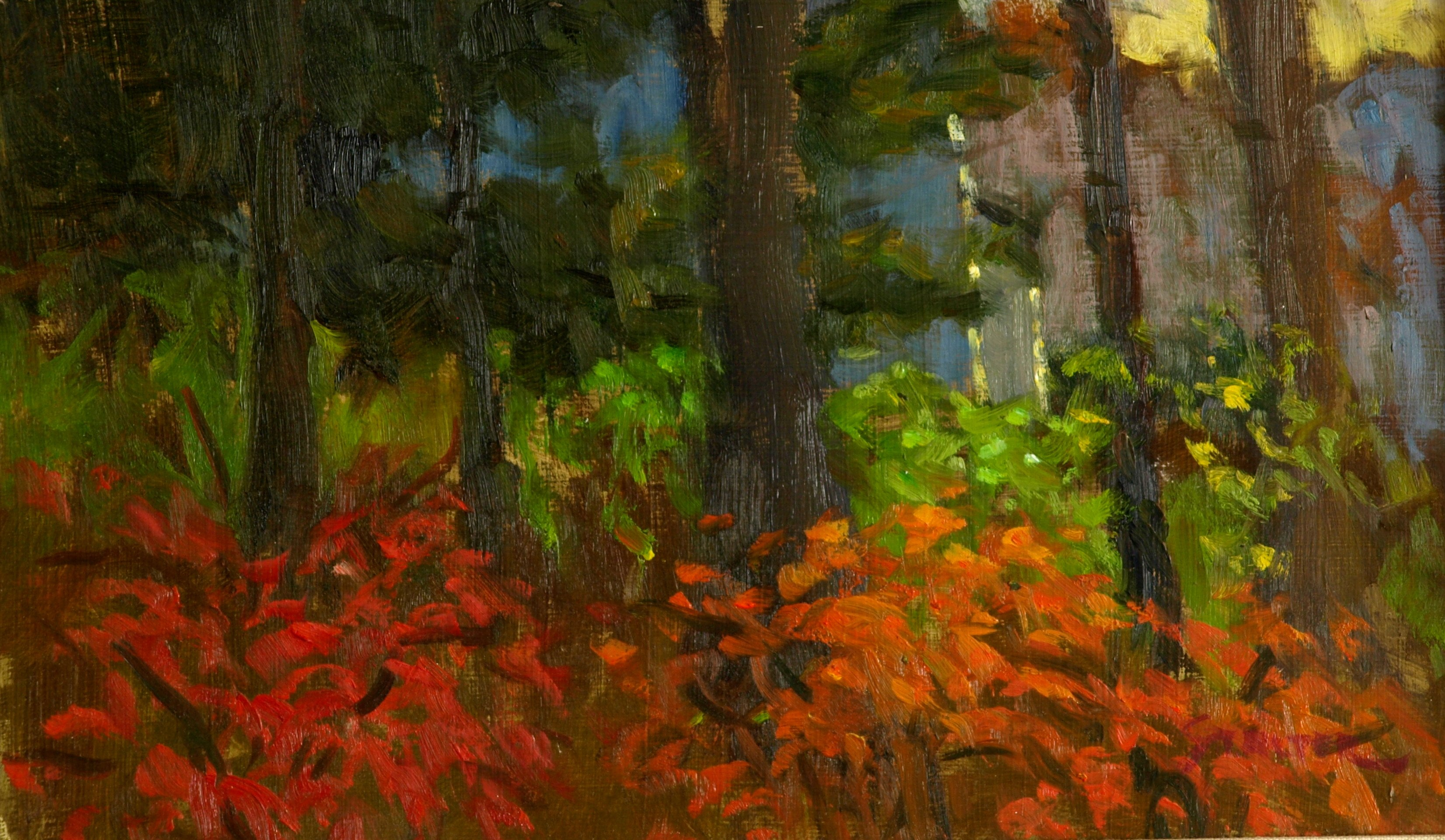 Autumn Glory, Oil on Panel, 8 x 14 Inches, by Richard Stalter, $225