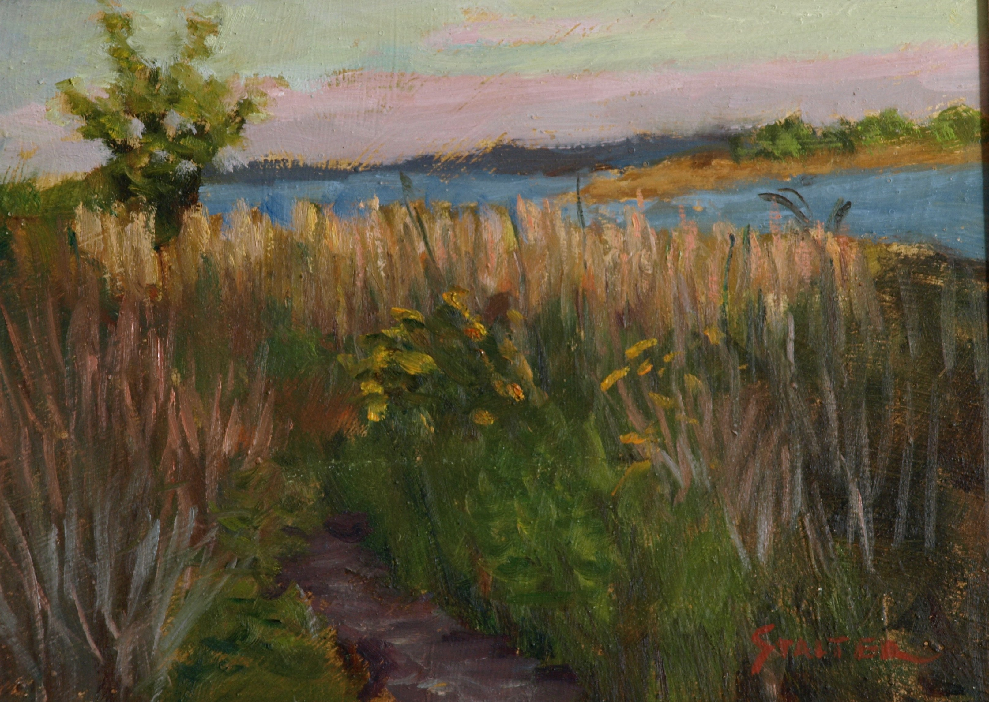 Marsh Pathway, Oil on Panel, 9 x 12 Inches, by Richard Stalter, $225