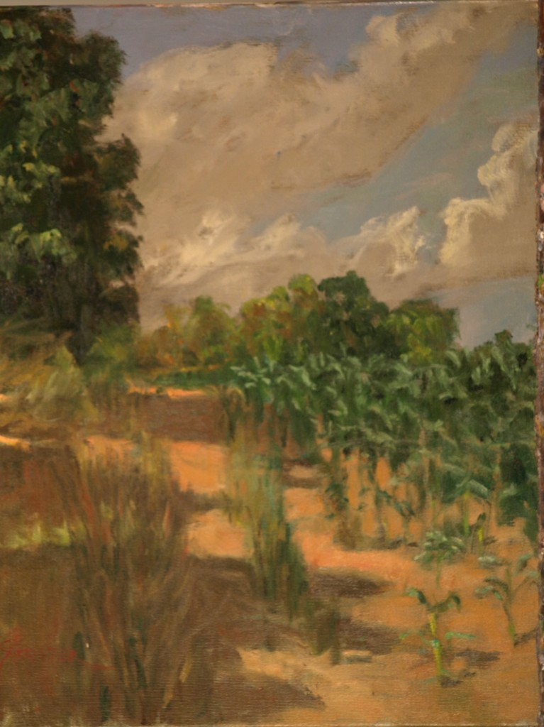 Edge of the Cornfield, Oil on Canvas, 20 x 16 Inches, by Richard Stalter, $450