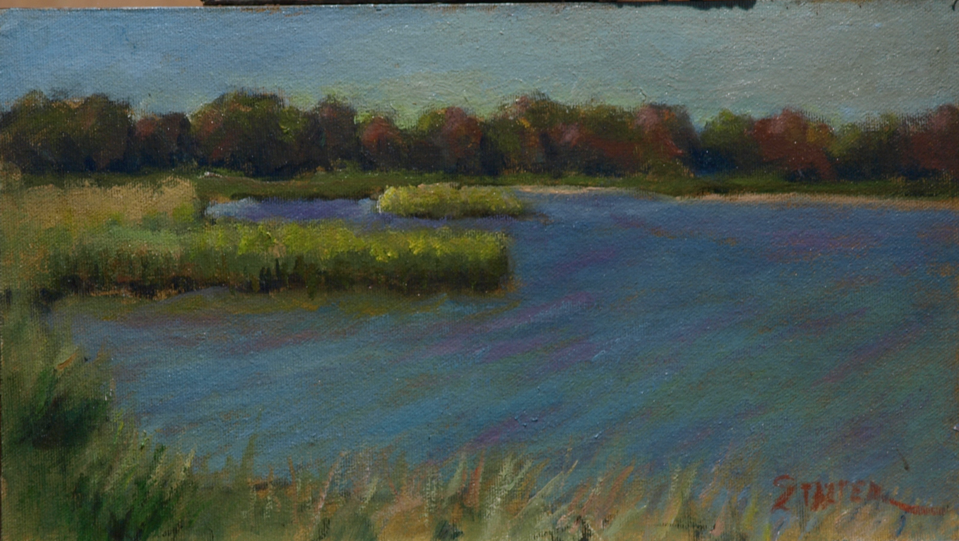 Palmer Pond, Oil on Canvas on Panel, 8 x 14 Inches, by Richard Stalter, $225