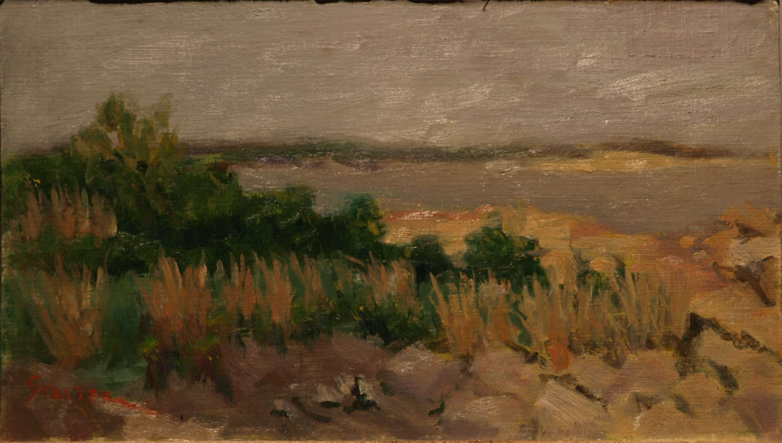 Stonington Marsh # 3, Oil on Linen on Panel, 8 x 14 Inches, by Richard Stalter, $225