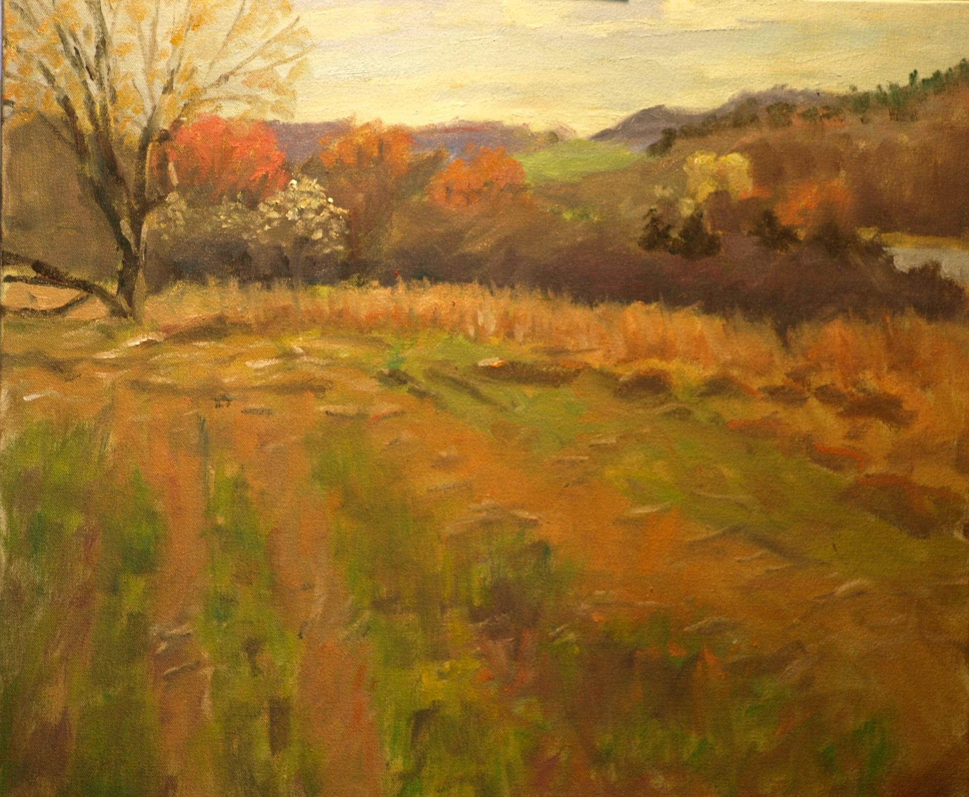 The Marsh Meadow - Spring, Oil on Canvas, 20 x 24 Inches, by Richard Stalter, $850