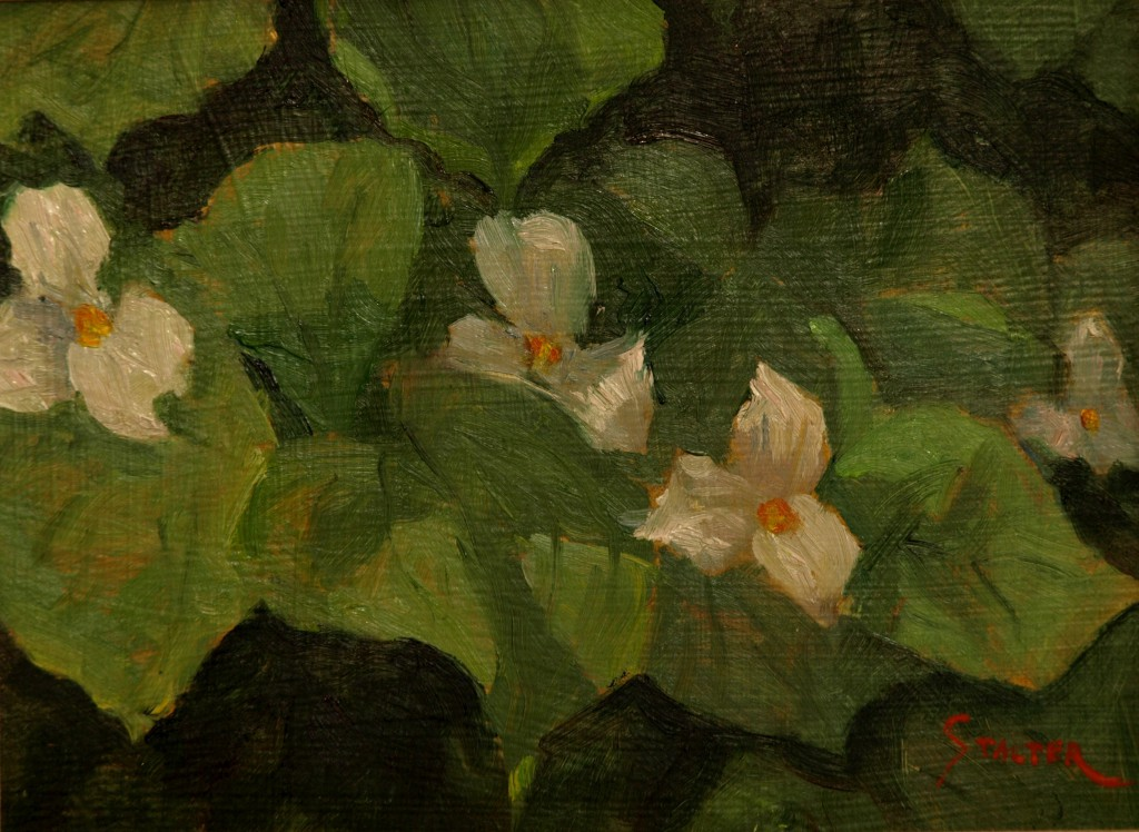 White Trillium, Oil on Panel, 9 x 12 Inches, by Richard Stalter, $225